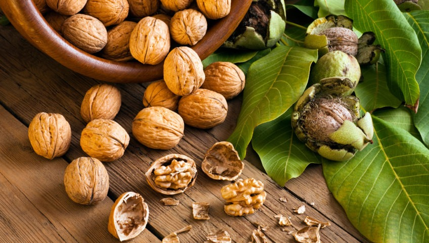 walnuts-benefits-superfood